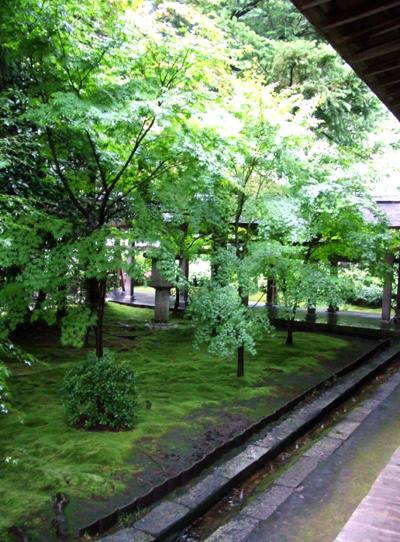 moss-garden.jpg